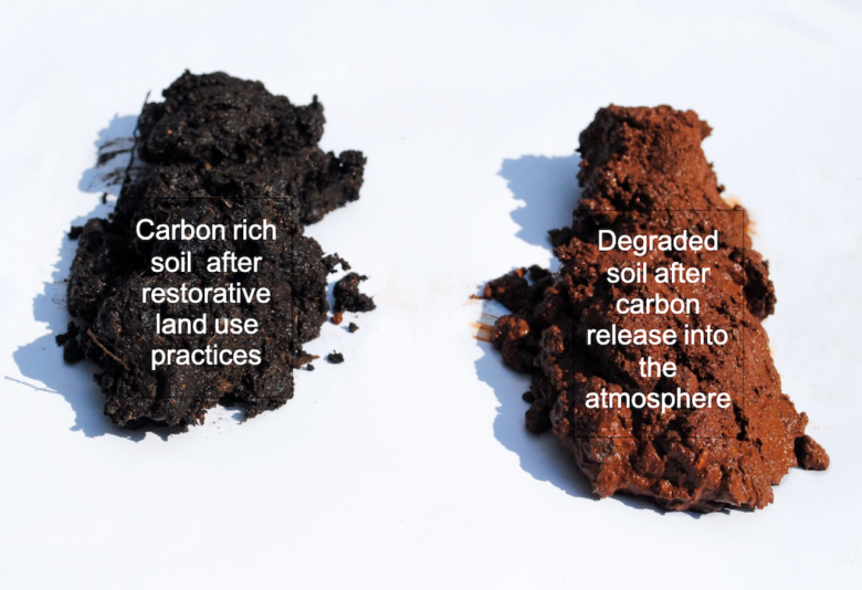 carbon-rich-soil-and-degraded-soil